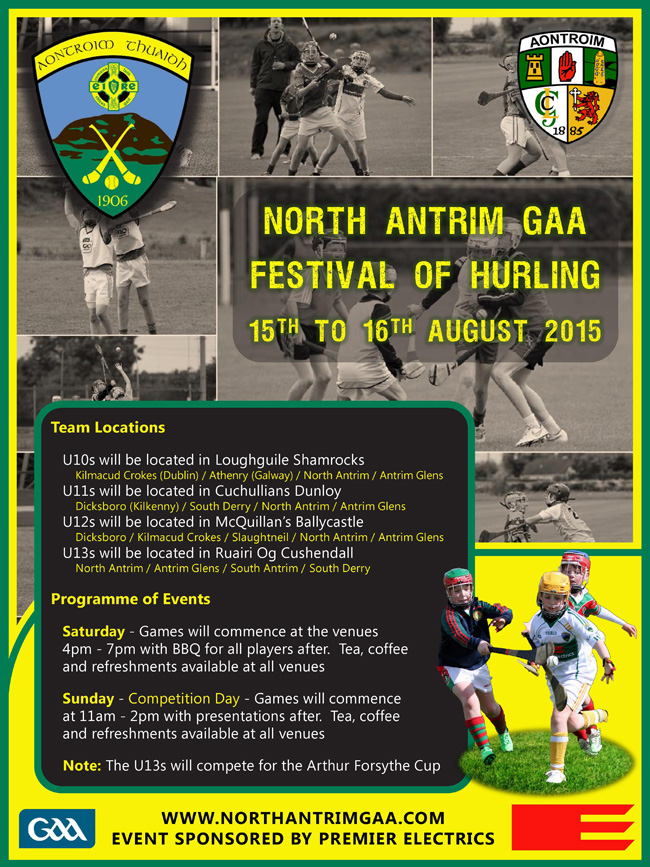 NA Festival of Hurling Poster - Web